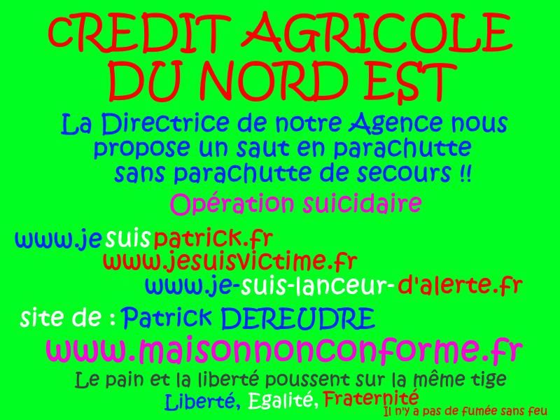CREDIT AGRICOLE DU NORD EST Site de Patrick DEREUDRE www.maisonnonconforme.fr